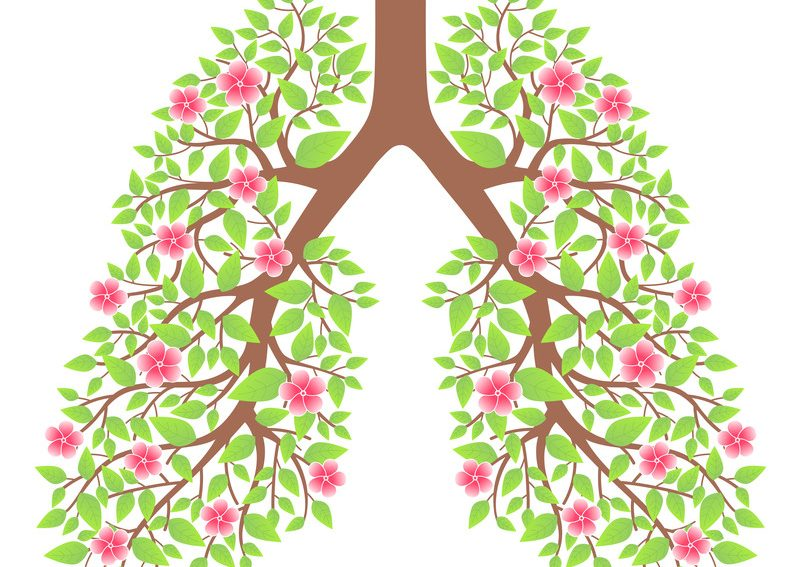 Self Care While Shut In: Qi-Gong To Strengthen The Lungs